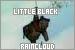 Winnie the Pooh: Little Black Rain Cloud