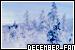 Months: December