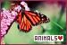 General Animals - Animals