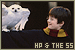 Harry Potter: The Philosopher/Sorcerer's Stone