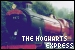 Harry Potter - The Hogwarts Express