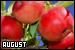 Months: August