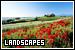General - Landscapes