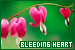Plants/Flowers/Herbs - Bleeding Heart