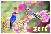 Weather/Seasons/Time - Seasons: Spring