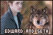 Twilight series - Edward Cullen and Seth Clearwater