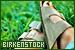 Brands - Birkenstock
