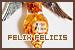 Potion: Felix Felicis